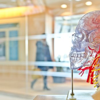 5 Types of Headlines Our Brains Are Wired to Click